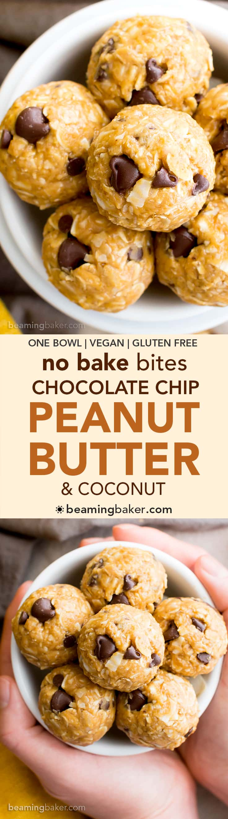 No Bake Peanut Butter Coconut Chocolate Chip Bites (V, GF, DF): a one bowl recipe for delicious protein-packed energy bites bursting with PB, chocolate and coconut! #Vegan #GlutenFree #DairyFree | BeamingBaker.com