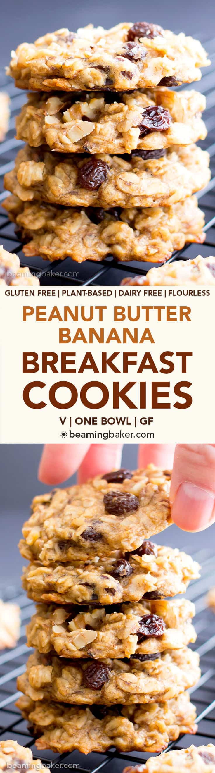 Easy Vegan Peanut Butter Banana Breakfast Cookies (V, GF): a one bowl recipe for chewy, protein-rich banana cookies, plus a great excuse to eat COOKIES for breakfast! #Vegan #GlutenFree #DairyFree #Breakfast | BeamingBaker.com