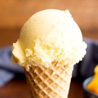 3 Ingredient Mango Coconut Vegan Ice Cream (Paleo, Dairy-Free, GF, Vegan)