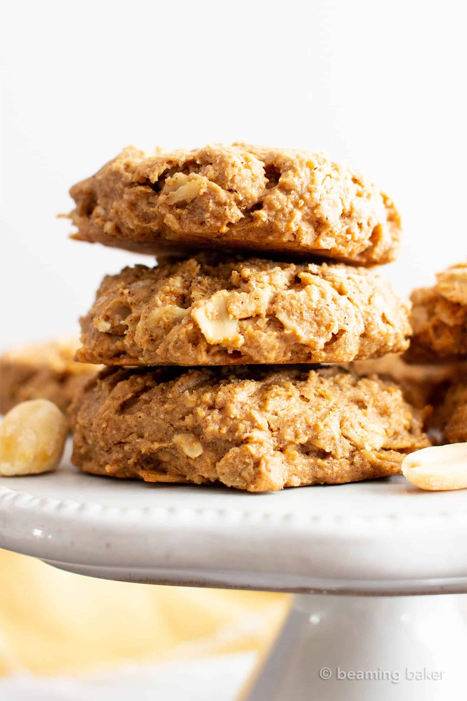 Diabetic Cookie Recipes With Applesauce