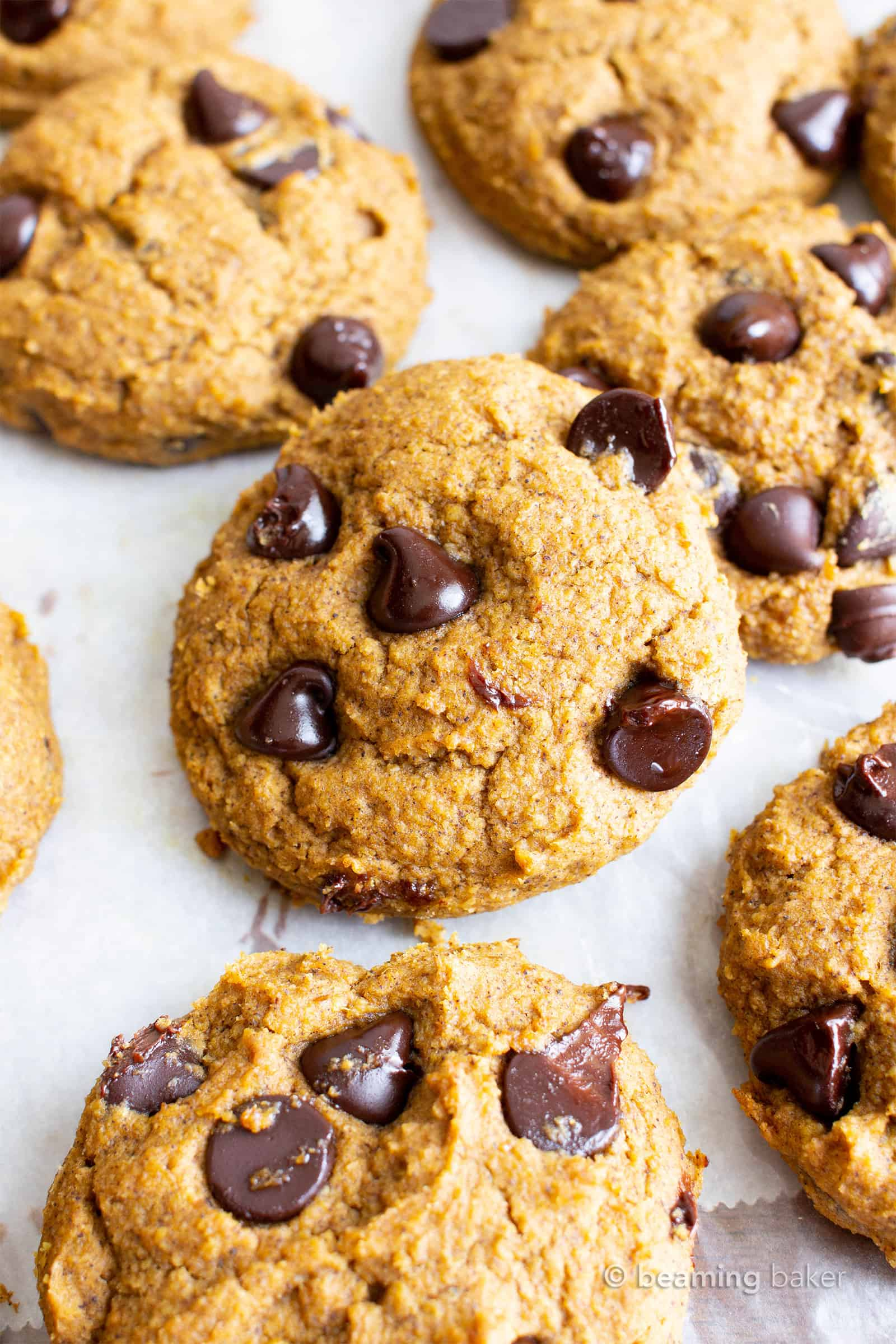 Soft 'n fluffy gluten free pumpkin cookies bursting with chocolate chips! An easy recipe for moist, cake-like vegan gluten free pumpkin chocolate chip cookies with warm fall spices. #GlutenFree #Vegan #Pumpkin #Cookies | Recipe at BeamingBaker.com