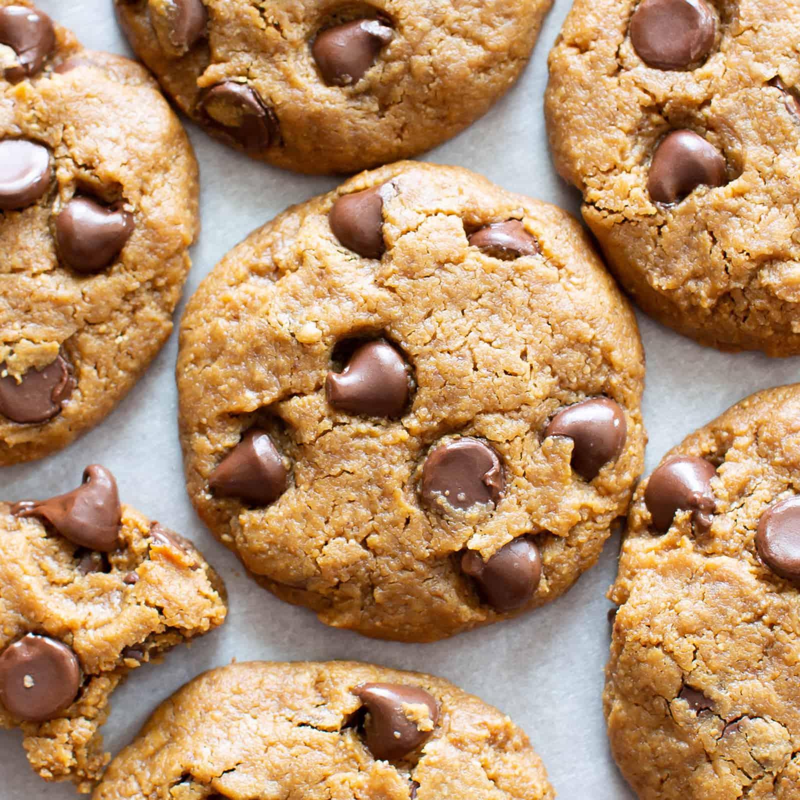 Chocolate Chip Homemade Cashew Butter Cookies Recipe