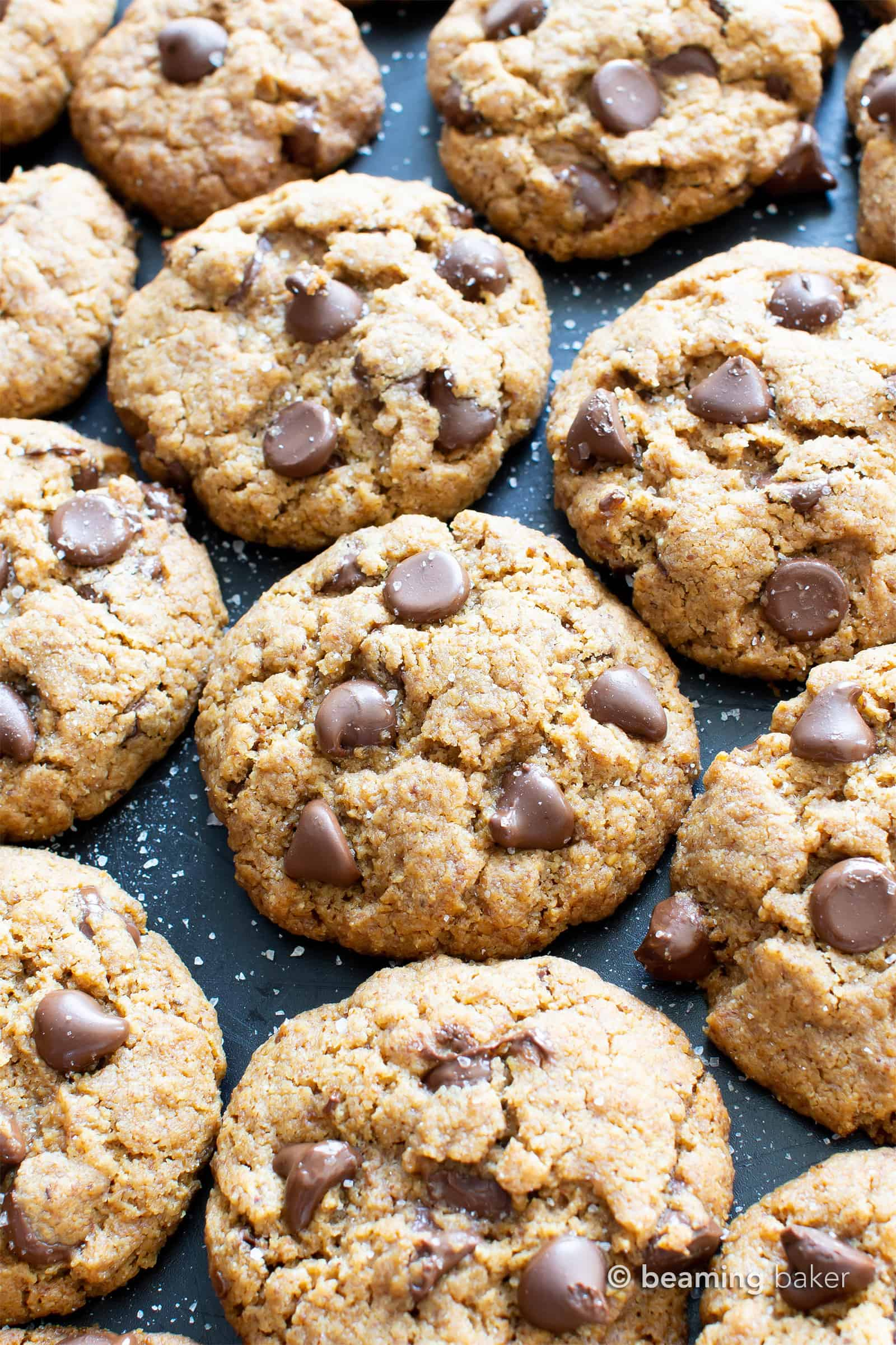 Salted Tahini Paleo Chocolate Chip Cookies (Coconut Flour): this gluten free chocolate chip cookies recipe is chewy, salty 'n sweet! The best coconut flour chocolate chip cookies made with tahini butter! #Paleo #GlutenFree #Vegan #Cookies #GrainFree #Chocolate | Recipe at BeamingBaker.com