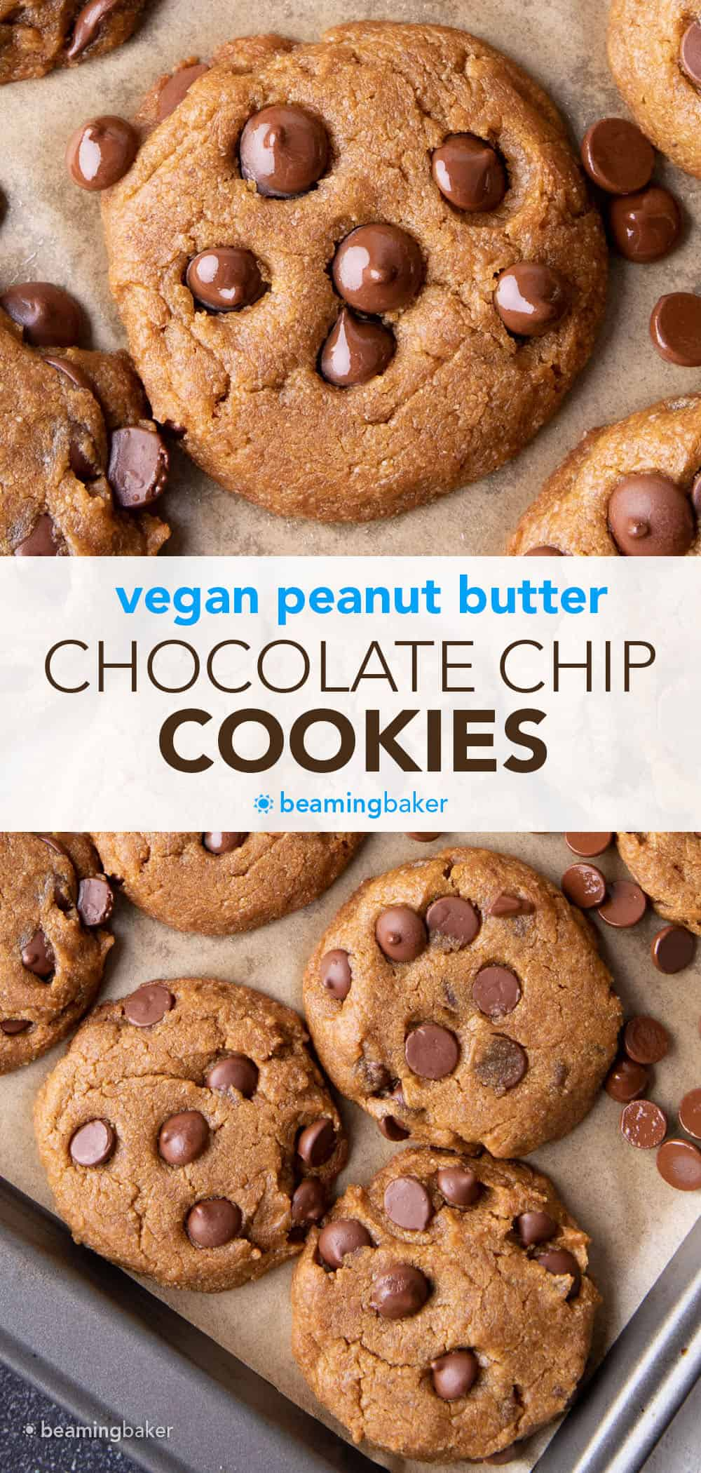 Vegan Peanut Butter Chocolate Chip Cookies: an easy recipe for chewy, moist vegan peanut butter chocolate chip cookies bursting with deep peanut butter flavor. #Vegan #PeanutButter #ChocolateChip #Cookies | Recipe at BeamingBaker.com